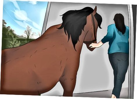 Trajtimi i kuajve nga toka