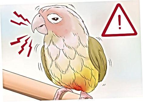 การเฝ้าระวังพฤติกรรมนอกกรอบ