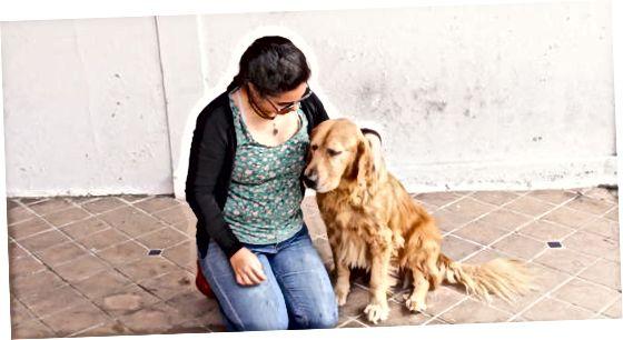 犬がハグに慣れるのを助ける