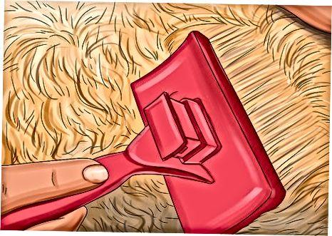 Uvedení doteků na váš Goldendoodle