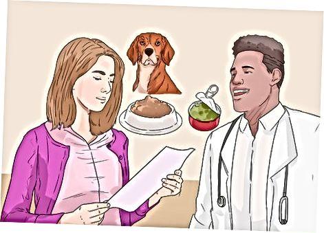 Tìm hiểu những gì để nuôi chó tiểu đường của bạn