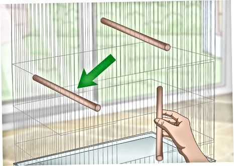 Configurando a gaiola
