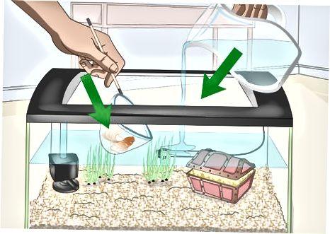 Lavado de grava en tanques pequeños