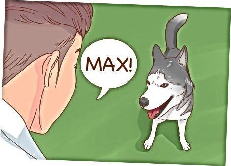 Hablando con tu perro