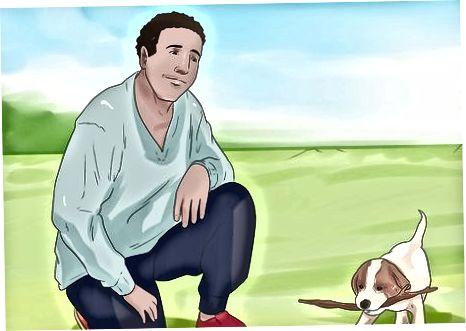 Socializando un cachorro