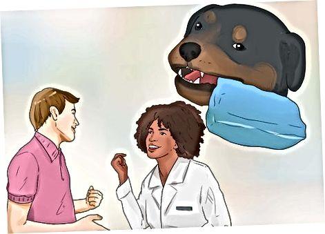 Criar a su cachorro Rottweiler