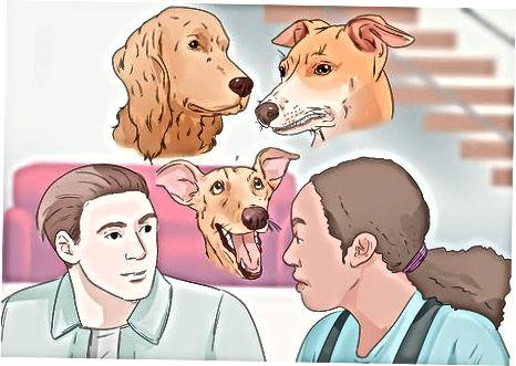 Determinar el tipo correcto de comportamiento