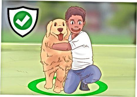 Mejorando tu relación con tu perro