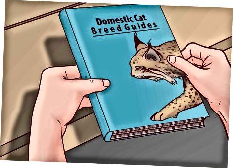 Vadovų naudojimas laukinėms ir naminėms katėms