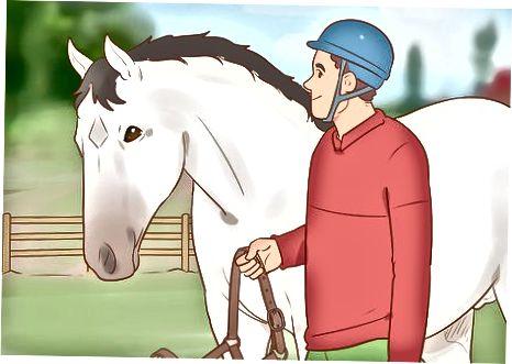Πλησιάζοντας ένα άναρχο άλογο