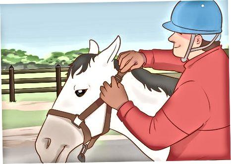 Χαλάρωση του αλόγου