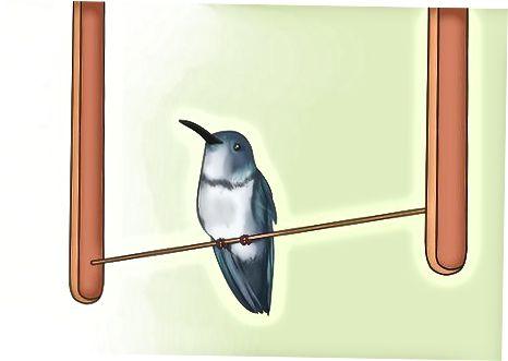 Бейишке Hummingbirds тартуу