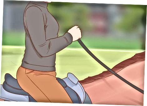Qetësimi i një kali të ngacmuar ndërsa jeni duke udhëtuar