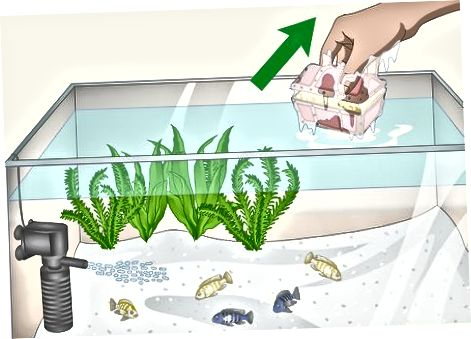 Kalade ümberpaigutamine puhastuse ajal