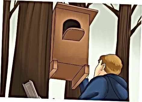 Instalar una caja de búhos