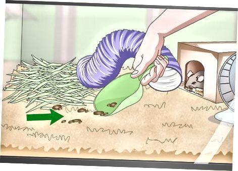 Peles mājas uzturēšana