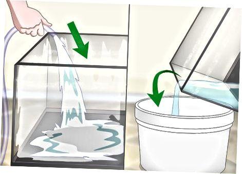 Sanitizing the Glass