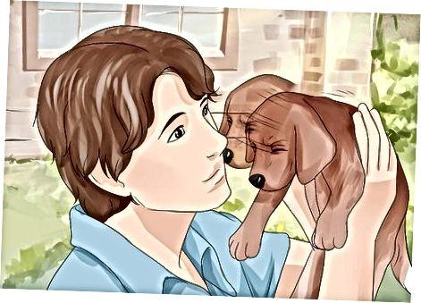 Entrenando a un cachorro para que le guste ser retenido