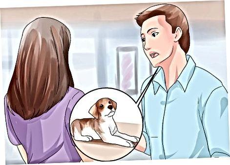 Recoger un cachorro de un refugio o tienda