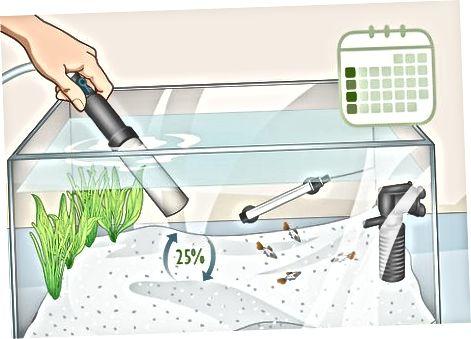 Monitoring en reiniging van het water