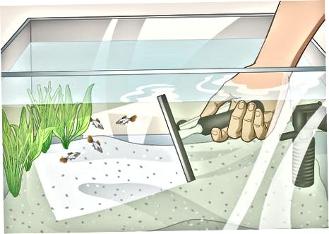 Memantau dan Membersihkan Air