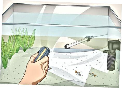 Monitorowanie i czyszczenie wody