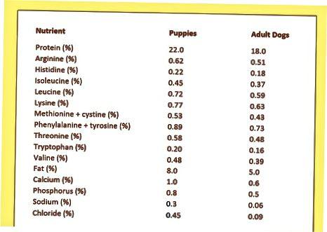 Determinación de cantidades y frecuencia de alimentación