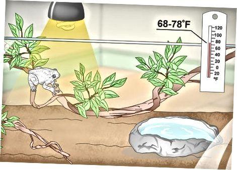 Establecer un hábitat