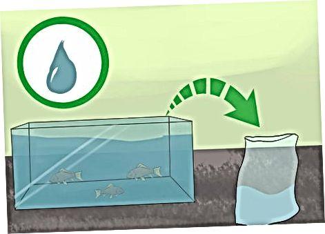 Mantener a sus peces seguros mientras viaja