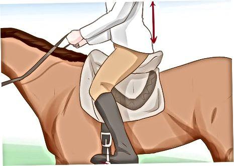 准备好你的马