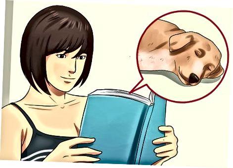 Nauka języka snu swojego psa