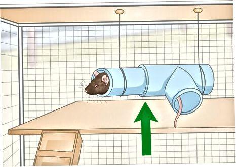 Hacer un escondite en casa
