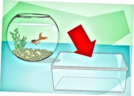 Reubicar tu pescado