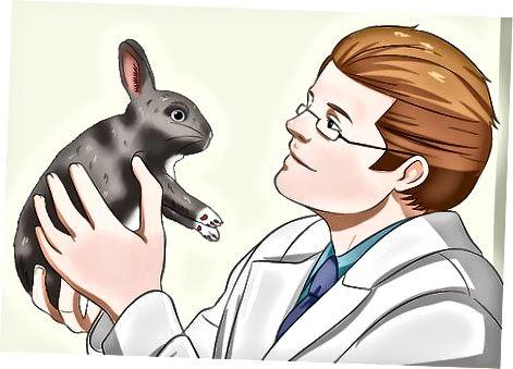 Besöker en veterinär