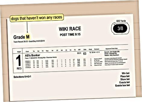 Określenie klasy wyścigu