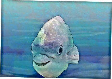 Rīkošanās ar saliektām zivīm