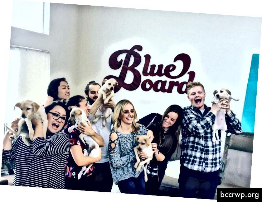 Blueboard pakub kogemuslikku töötajate premeerimis- ja tunnustusplatvormi.