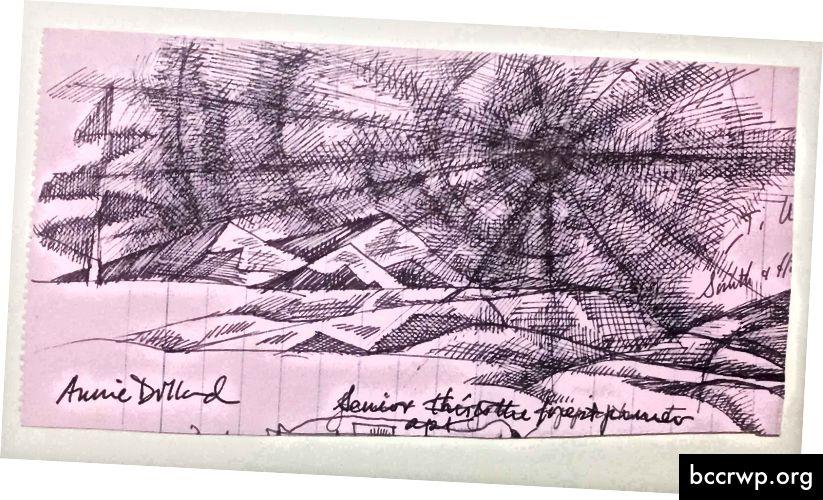 Annie Dillard Doodle Dandy osallistui Yankee Doodle -projektiin. Tekijän kuva.