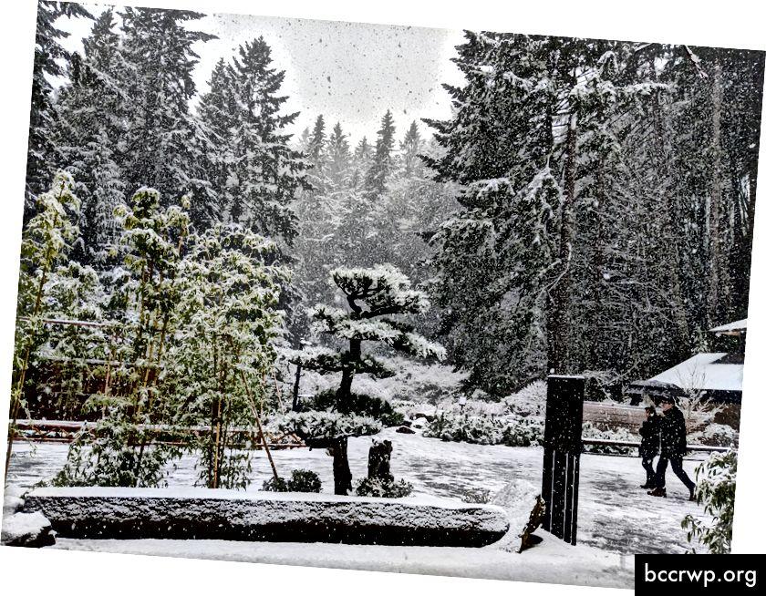 Japanese Garden í Portland Oregon er staður sem ég hef gaman af að snúa aftur til