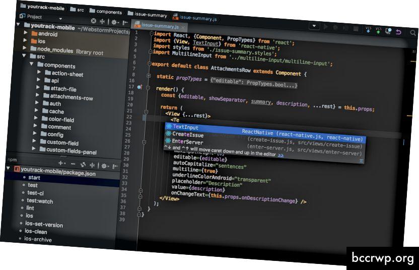 """Webstorm"", šiuo metu populiarus IDE, kurį sukūrė ""Jetbrains"". Vaizdas: jetbrains.com"