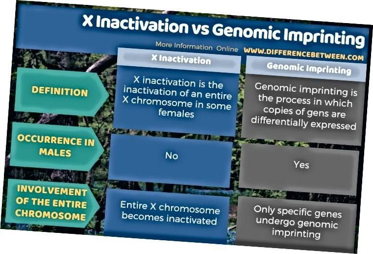 Erinevus X inaktiveerimise ja genoomse jäljendi vahel tabelina