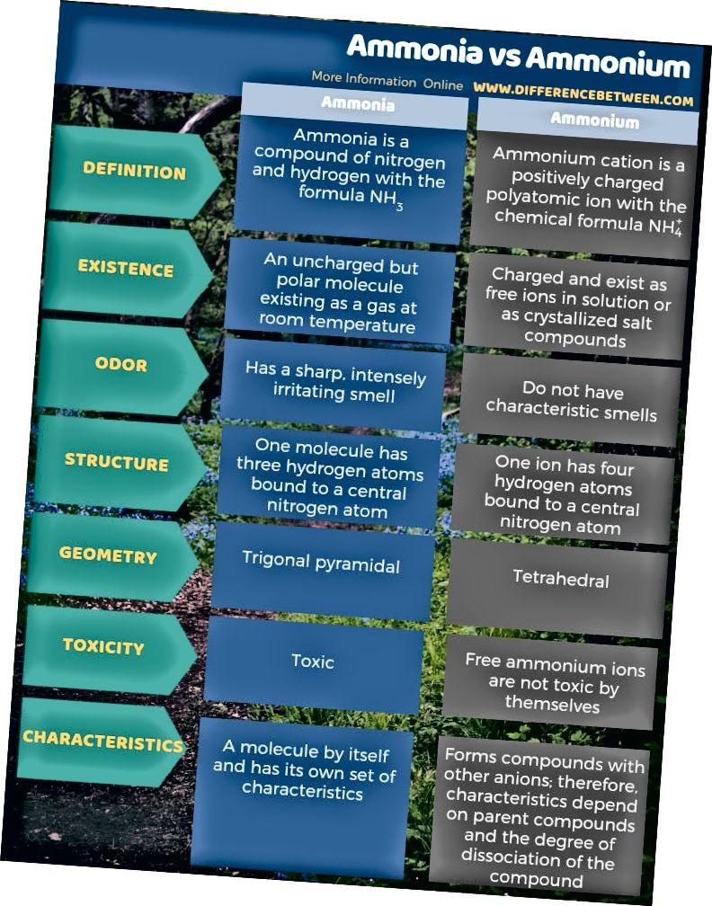 Разлика между амоняка и амония - таблична форма