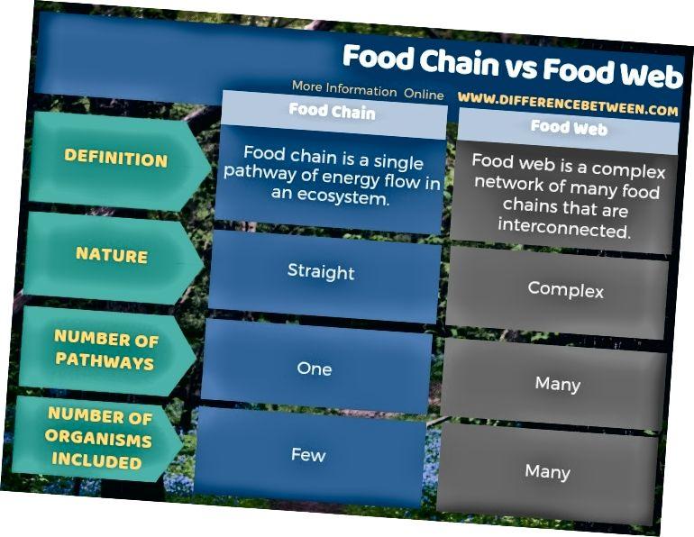 Διαφορά μεταξύ της τροφικής αλυσίδας και του διατροφικού ιστού σε μορφή πίνακα