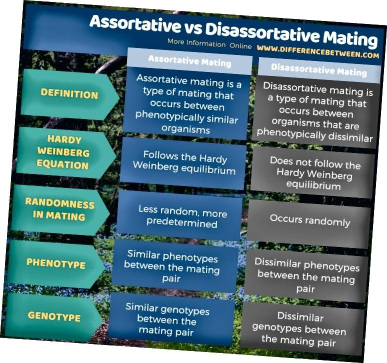Diferències entre l'aparell assortit i el desassort en forma tabular