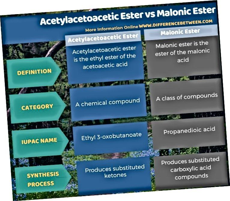 টেবুলার আকারে এসিটিলিসটোসেটিক এস্টার এবং ম্যালোনিক এসটারের মধ্যে পার্থক্য