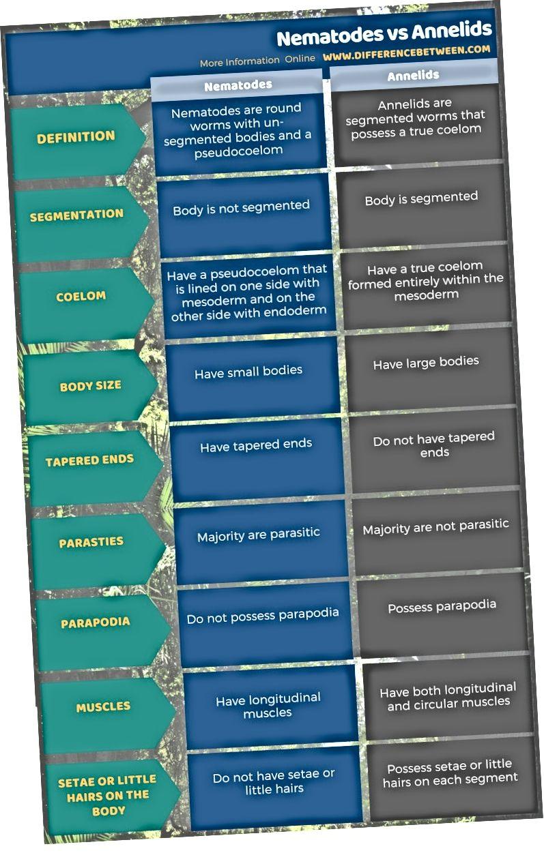 Diferència entre nematodes i anèl·lids en format tabular