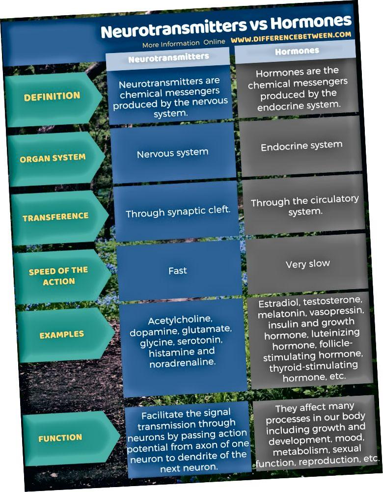 Diferència entre neurotransmissors i hormones en forma tabular