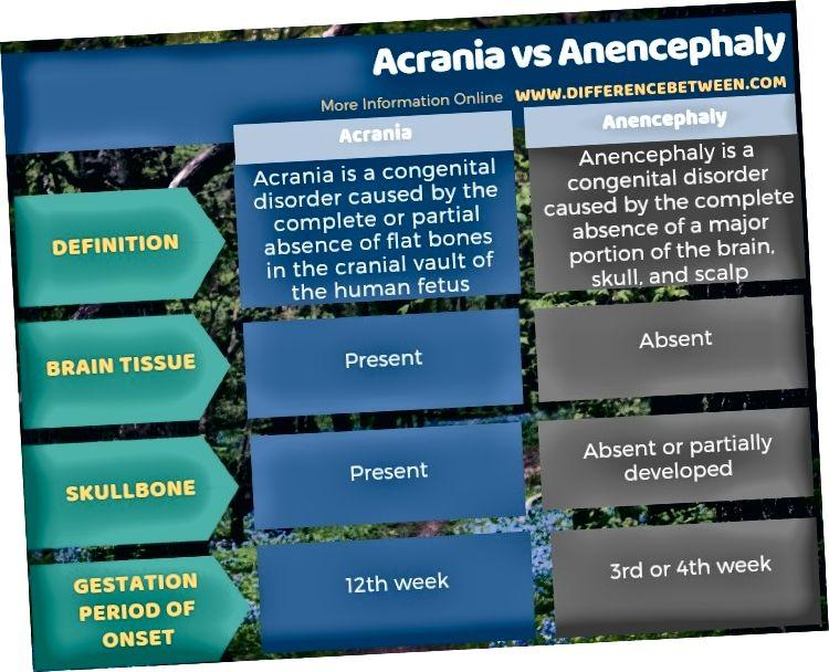 Unterschied zwischen Acrania und Anencephalie in tabellarischer Form