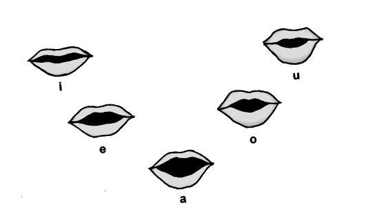 Diferència entre vocals i consonants