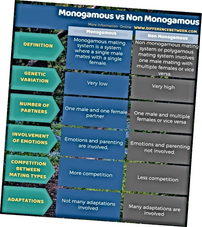 Diferència entre monògama i no monògama en forma tabular